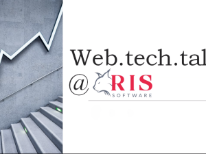 RIS Web development edukacija